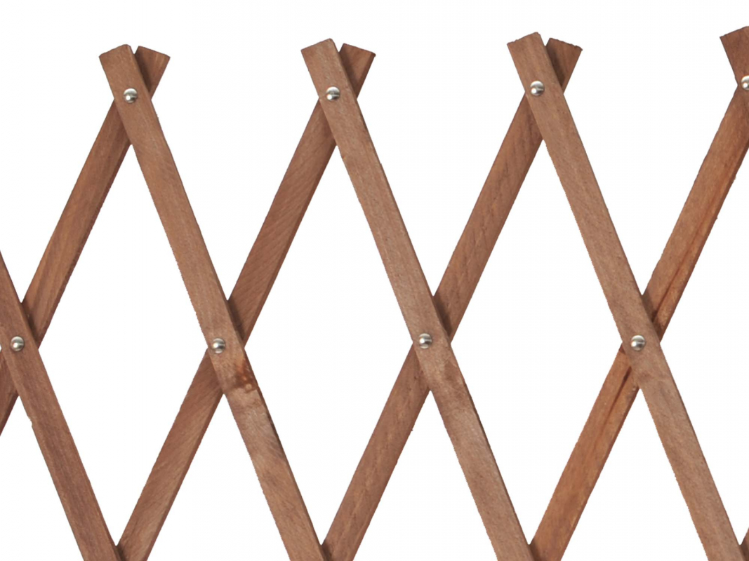 treillage extensible bois. Black Bedroom Furniture Sets. Home Design Ideas