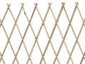 Treillage extensible cannes de bambou L. 3.00 m x H. 1.00 m