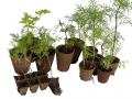 Lot de 18 godets biodégradables