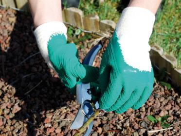 Gant de jardinage Rosier Petits Epineux