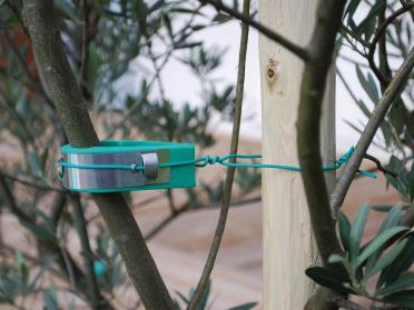 Souple et résistant pour tuteurer les jeunes arbres